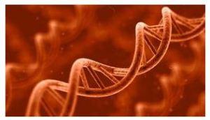 cambios moleculares